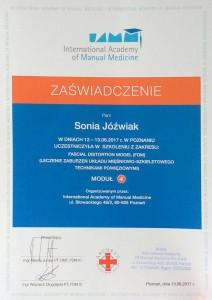 FDM, terapia manualna